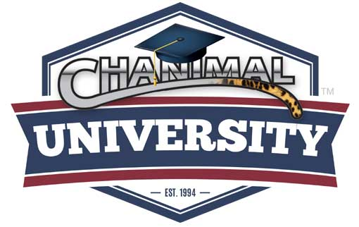 chanimal university certified channel manager training
